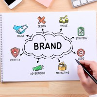Are You Searching for Better Brand Results?