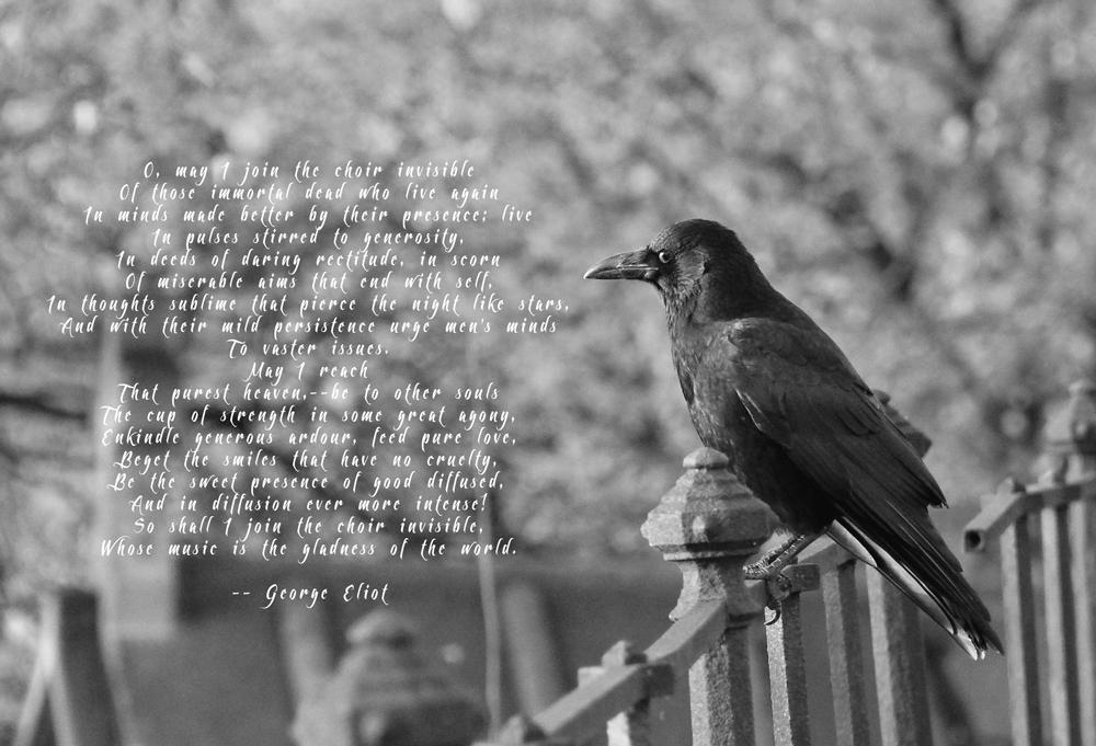 George-Eliot-web