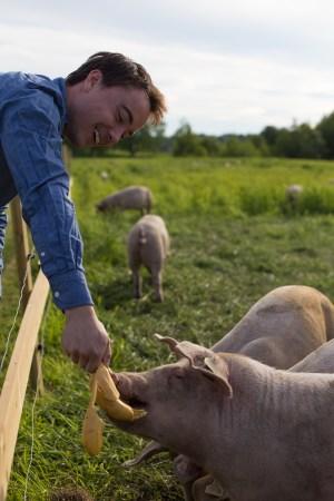 asbjorn_og_gris