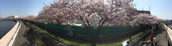 Photo Mar 30, 10 33 54 AM