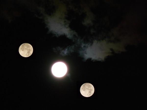 Moons over Shinkoiwa