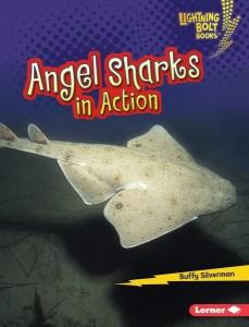 Lightning Bolt Books ™ — Shark World