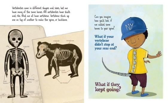 Bone by Bone nonfiction picture book spread