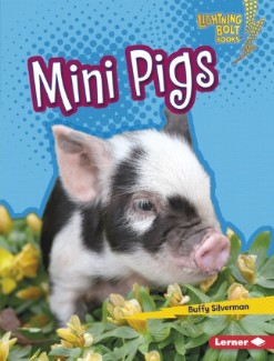 pet books for young readers: Mini Pigs