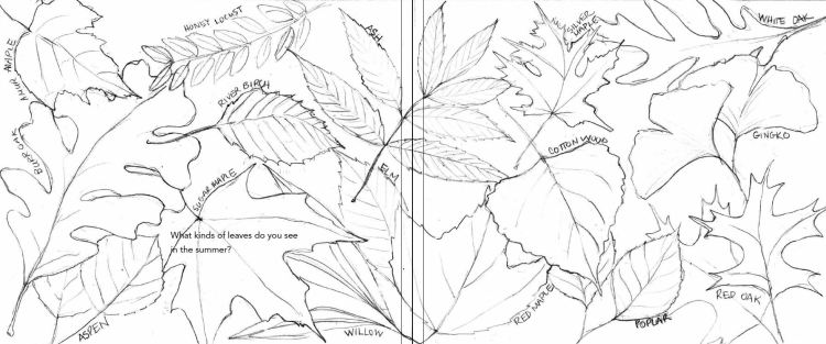 Fall Leaves -4