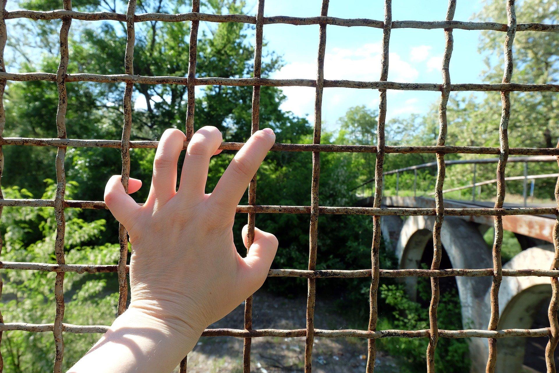Eine Hand hält ein Gitter, im Hintergrund sieht man eine Brücke und Natur