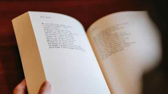 person reading interesting book in hands, ZP 10 Leseverstehen Deutsch Englisch