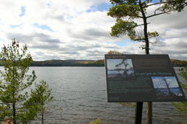 This is the spot where Tom Thomson painted