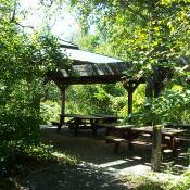 The picnic area at the Sarsaparilla trail.