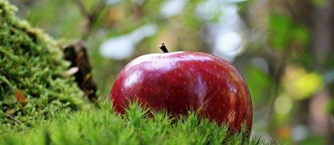 pomme délicieuse