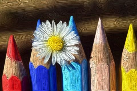 des crayons  de couleur et une fleur