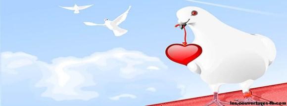 fetes-saint-valentin-colombe-apporte-coeur-photo-de-couverture-journal-facebook.jpg