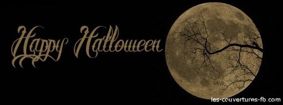pleine lune - Photo de couverture journal Facebook