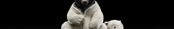 Costume d'ours- Photo de couverture journal Facebook