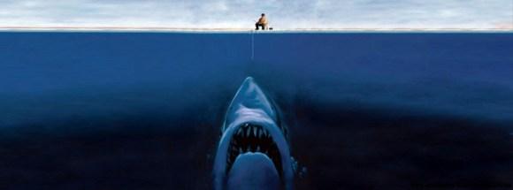 Requin - Photo de couverture journal Facebook
