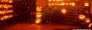 couverture facebook halloween citrouilles