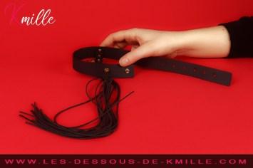 Les cadeaux de Cyllou21 - Le collier fouet Maze