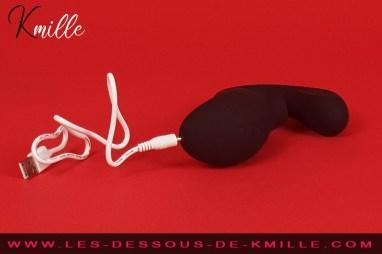 Test du stimulateur sonique double action, de la marque Lelo.