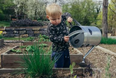 Utiliser le compost au jardin