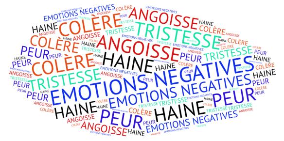 14 EMOTIONS NEGATIVES