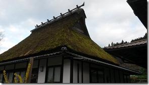 campagne-kyoto-filles-du-thé