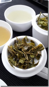 infusion-degustation-the-vert-de-chine-les-filles-du-the