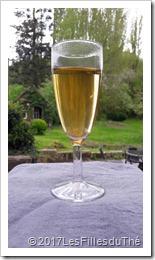Darjeeling : les 4 indispensables pour choisir un Champagne des Thés plutôt qu'un Champony !