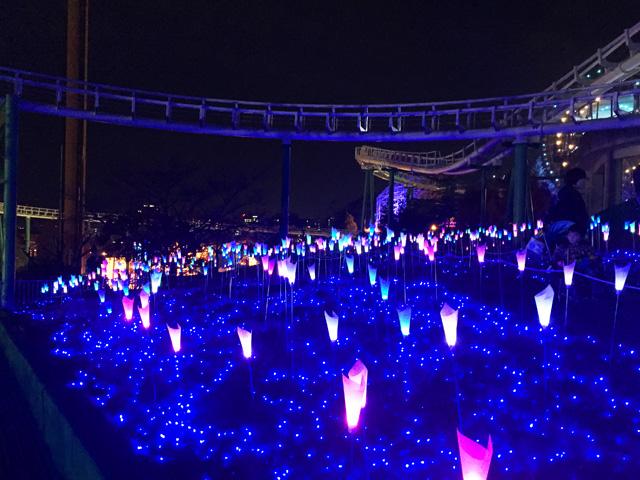 ひらパー,光の遊園地,光の花園
