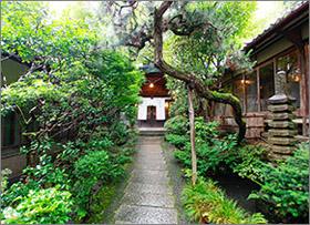 東観荘の庭,アプローチ,京都円山,京都の料亭,とうかんそう,