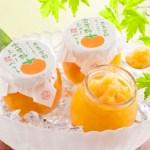 奈良吉野凍らせて食べる富有柿シャーベット,