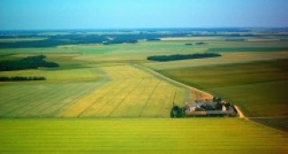 La Beauce est la première région céréalière d'Europe