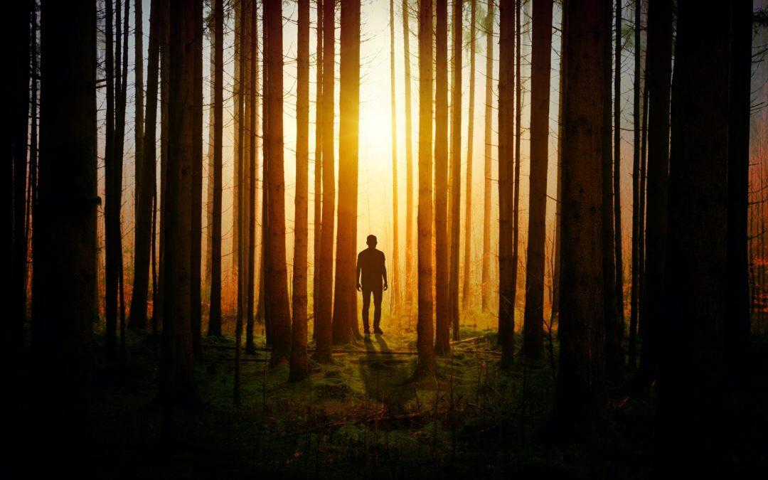 En automne : Poser ses intentions pour garder le cap & avancer en conscience {´◕ ◡ ◕`}