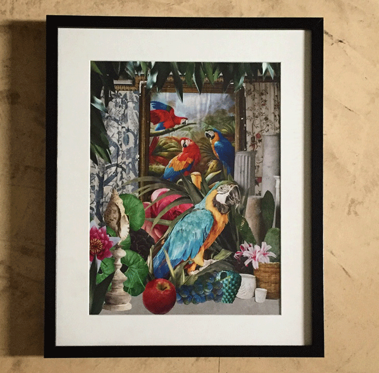 Paper collage with parrots Ara Macao in a victorian atmosphere.