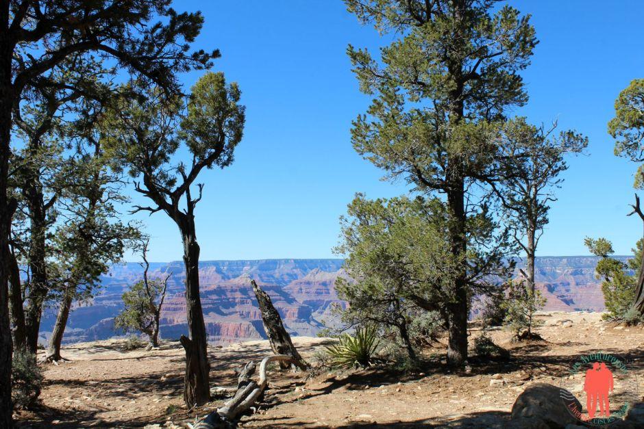 sur la route du Grand Canyon