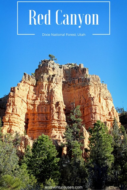Red Canyon, National Dixie Forest, Utah, USA