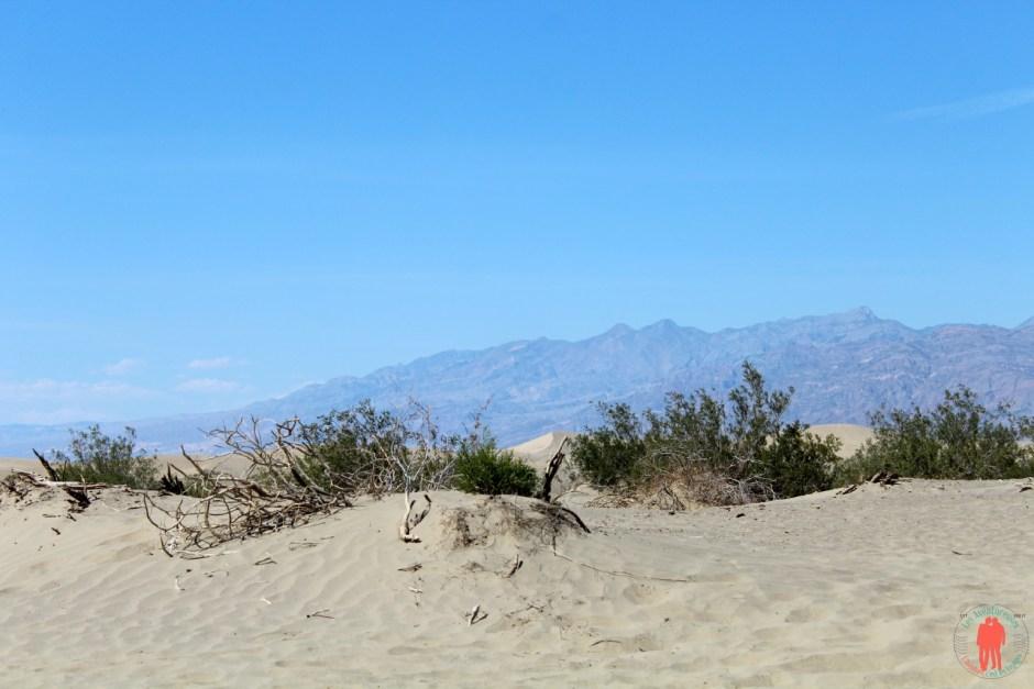Desert Vallée de la mort