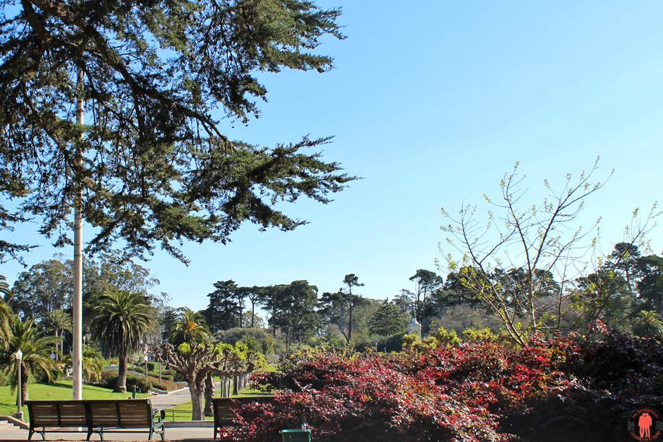 Golden Gate Park Visiter San Francisco