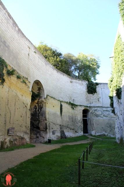 Château de Brézé Douve sèche 3