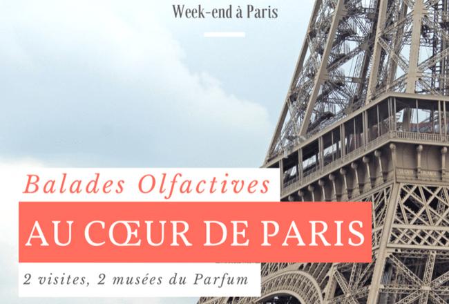 Une Visite Pour Deux Musée Du Parfum Au Cœur De Paris