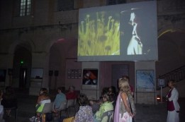 Projection nocturne d'Edgar Moroni