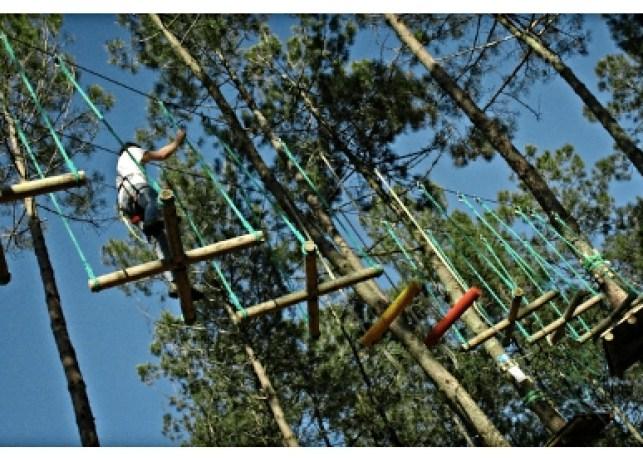 bassin aventures, parcours dans les arbres, Gujan