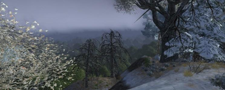 Album – La route sous la forêt