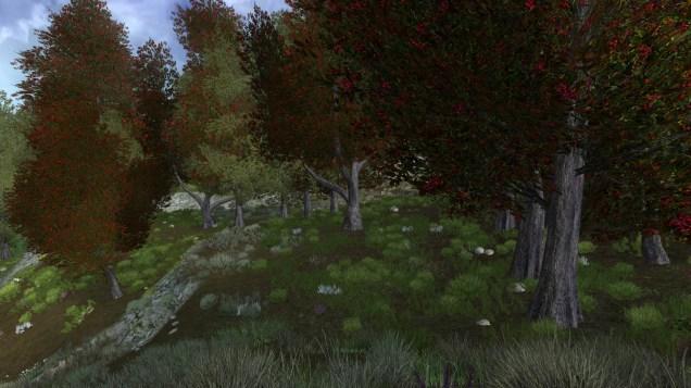 ScreenShot00550