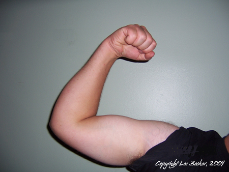 Male flexing his bicep for the camera