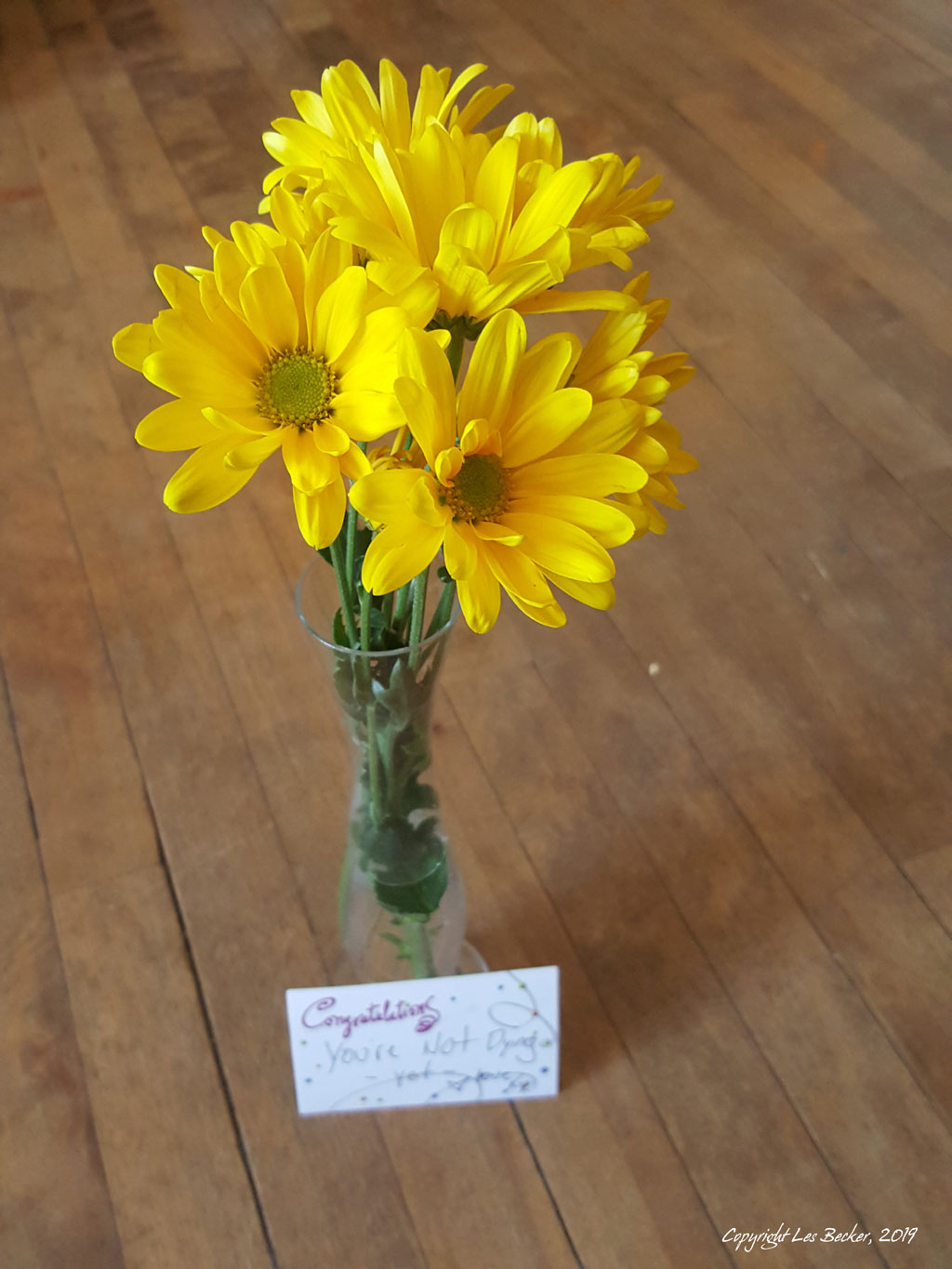Bouquet of yellow daisies in a vase, with card