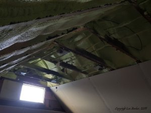 Reno - exposed rafter beams