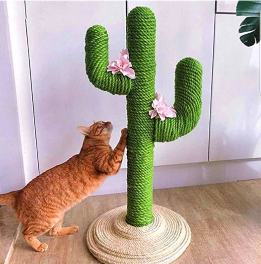Cat scratching on a cactus-shaped scratching post