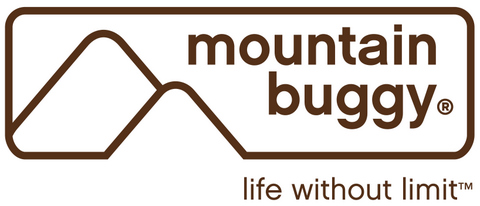 mountain_buggy