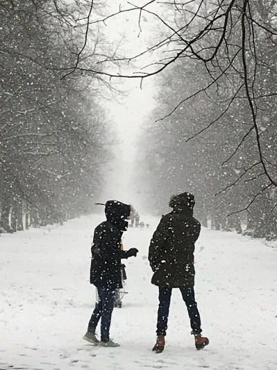 Walkers in Kensington