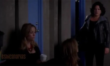 Callie y Arizona resumen de episodio 7×11